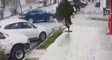 Bu kadarı pes dedirtti! hamile sokak köpeğinin üzerinden arabayla geçti