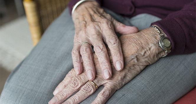 Türkiye'nin en yaşlı nüfusu O ilimizde