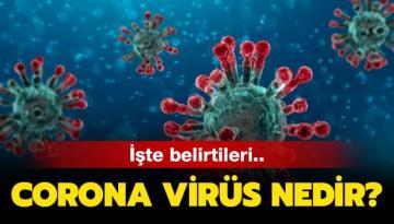 Koronavirüs nedir: Covid-19'a karşı hangi önlemler alınmalı, virüsün özellikleri neler?