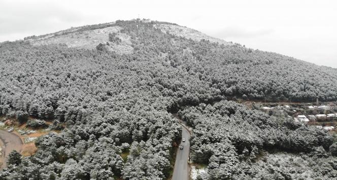 Kar yağışı sonrası Aydos Ormanı'nda kartpostallık görüntüler oluştu